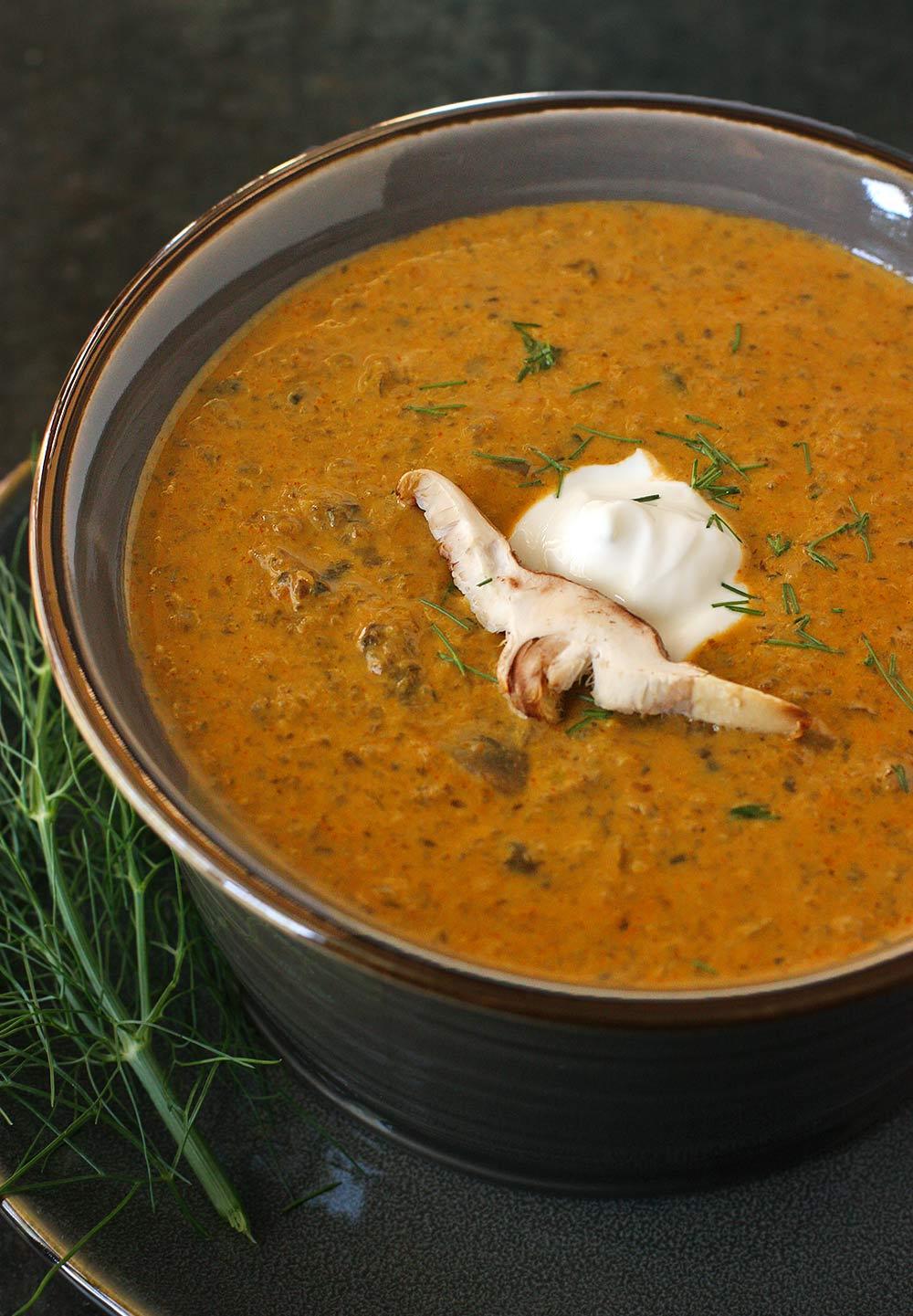 Hungarian Mushroom Bisque from Soupaddict.com